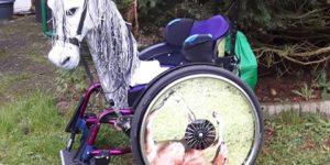Pferdekopf für Rollstuhl Nach links und rechts schwenkbar