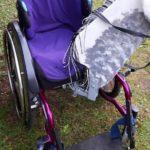 Pferdekopf für Rollstuhl Durch robustes Schnellwechsel-Scharnier mit dem Rollstuhl verbunden