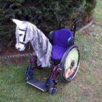 Pferdekopf für Rollstuhl Therapie, Freude und Aufmerksamkeit