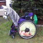 Pferdekopf für Rollstuhl Realistische Silhouette